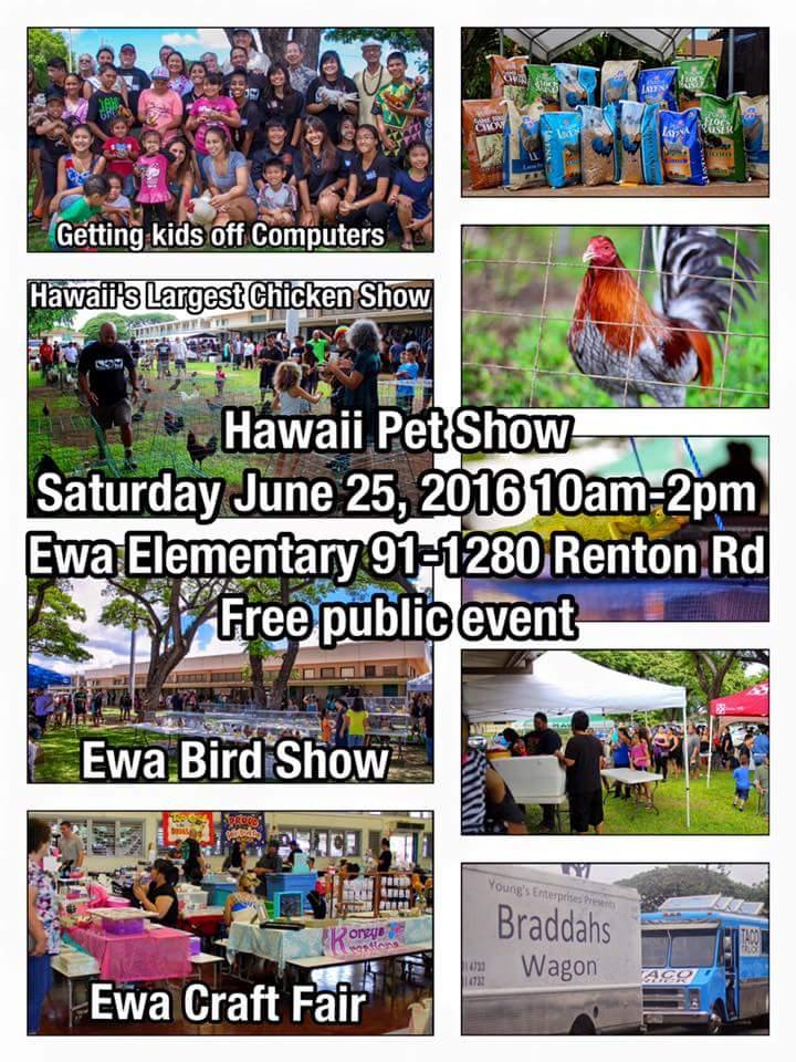 ewa bird show